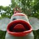 """Headshot of """"Sock Monkey"""" by Joe Barrington in True South sculpture exhibit Houston"""