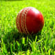 This type of ball used in test matches.