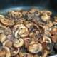 Saute the mushrooms until tender