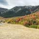 This beautiful fall foliage was captured in Mantua, Utah