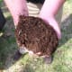In the above photo is compost that has went through the process of breaking down. When it is this mature you can apply it around your vegetable plants.