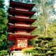 Japanese Tea Garden in Golden Gate Park