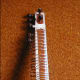 Sitar from India