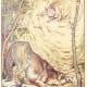 Wolf is praying