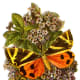Butterfly clip art pictures: Orange, yellow and black butterfly clip art