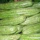 Bitter Melon (Public Domain)