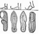 history-of-sandals