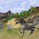 Wildlife Park 2 Gameplay