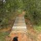 Fredericksburg Nature Trail Lady Bird Johnson - Fredericksburg TX