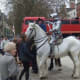 Celebrating St George's Day in Fengate, Peterborough