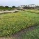 fukuoka-budget-my-travel-best-uminonakamichi-seaside-park