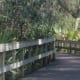 nature walkway at Turkey Creek