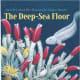 The Deep-Sea Floor by Sneed B. Collard III