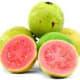 Guava (Bayabas)