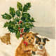Vintage pet Christmas card -- dogs sledding carrying large holly branch