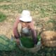 A Cambodian Khmer Farmer