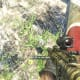 Archaeology 101 - Gameplay 03: Far Cry 3 Relic 67, Boar 7.