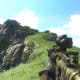 Archaeology 101 - Gameplay 02: Far Cry 3 Relic 116, Heron 26.