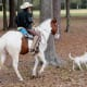 Francisco and his horse named Pinto in Keith-Wiess Park
