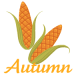 two corn ears clip art: autumn