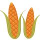 two corn ears clip art