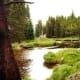 Scenery as we get closer to Grand Lake, Colorado
