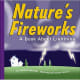 Nature's Fireworks: A Book About Lightning (Amazing Science: Weather) by Josepha Sherman