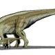 State Fossil: Duck-Billed Dinosaur [9]