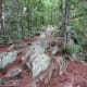 Amazing large rocks along the Rocktop Trail at Crowders Mountain State Park.
