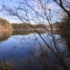 The Lake taken in late fall.
