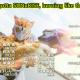 kamen-rider-zero-one-opening-analysis