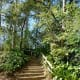 Steps leading up to overlook Cypress Creek & also the gardens