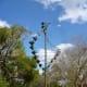 Cross Winds sculpture by Brian Koehl at Mercer Arboretum