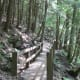 After the switchbacks come the wooden walkways.