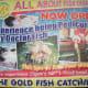 Fish Spa Advertisement
