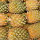 Queen Formos- one of the Philippines' sweetest pineapple.