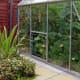 Growing Organic Marrows in Greenhouse