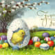 Yellow baby chick in a broken eggshell surrounded by colored Easter eggs
