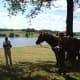 Horse riding and story telling at Videix Lake