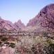 Chisos Mountains Basin