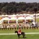 Dressage Olympic event outside Barcelona, Spain 1992