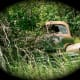 scenic-byways-a-gallery-of-abandoned-cars