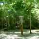 Number 5 Basket