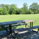 Sole picnic table in the park