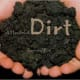A Handful of Dirt by Raymond Bial