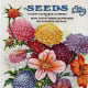 Deposit Seed Co. vintage seed packet clip art -- 1929