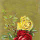 Vintage yellow and red rose image on a gold background clipart