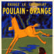 Brand Identity: Bolting Horse for Poulain chocolate