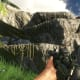 Archaeology 101 - Gameplay 02: Far Cry 3 Relic 113, Heron 23.