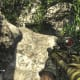 Archaeology 101 - Gameplay 03: Far Cry 3 Relic 69, Boar 9.